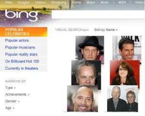 bing_visual